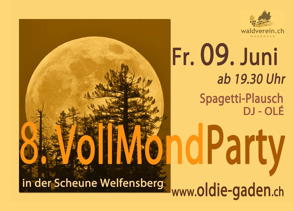 Vollmond Party 2017 F